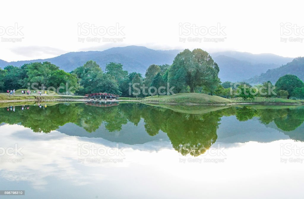 Taiping Lake Gardens stock photo