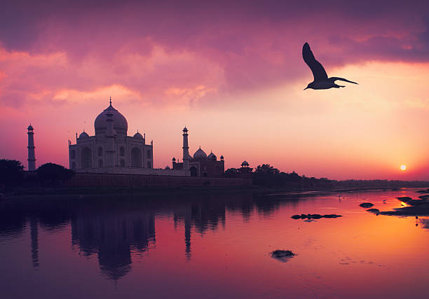 taj mahal and the yamuna river - india stock pictures, royalty-free photos & images