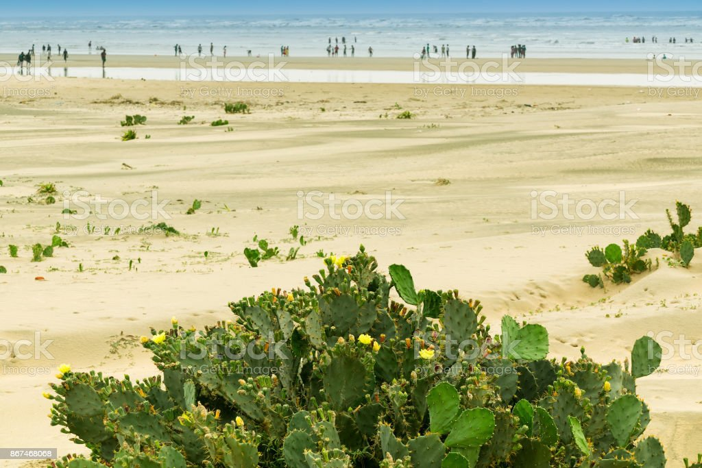 Tajpur sea beach stock photo
