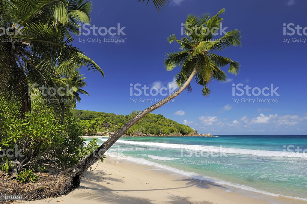 Takamaka Beach on Mahe island royalty-free stock photo