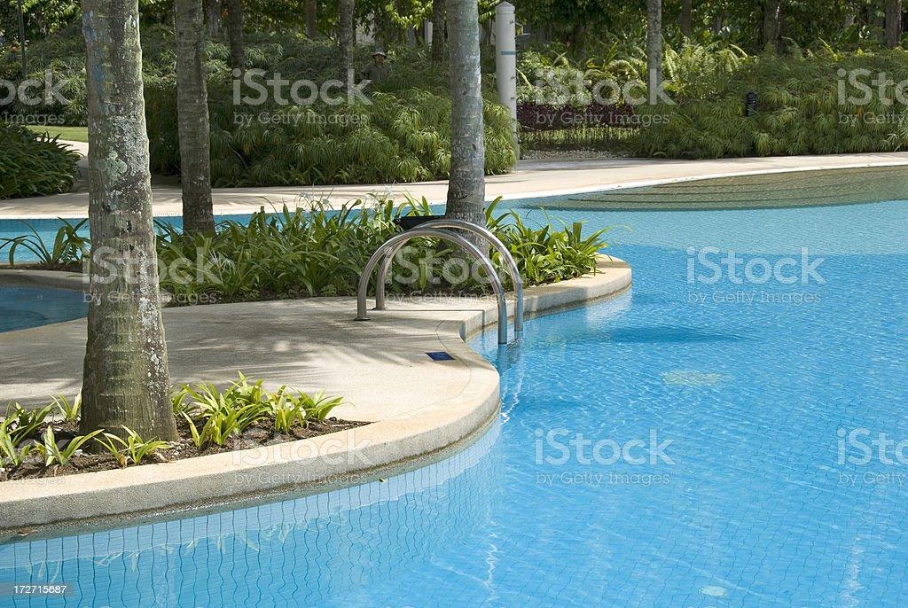 Take a swim royalty-free stock photo