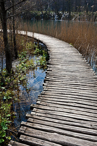 take a turn left - plitvice lakes stockfoto's en -beelden