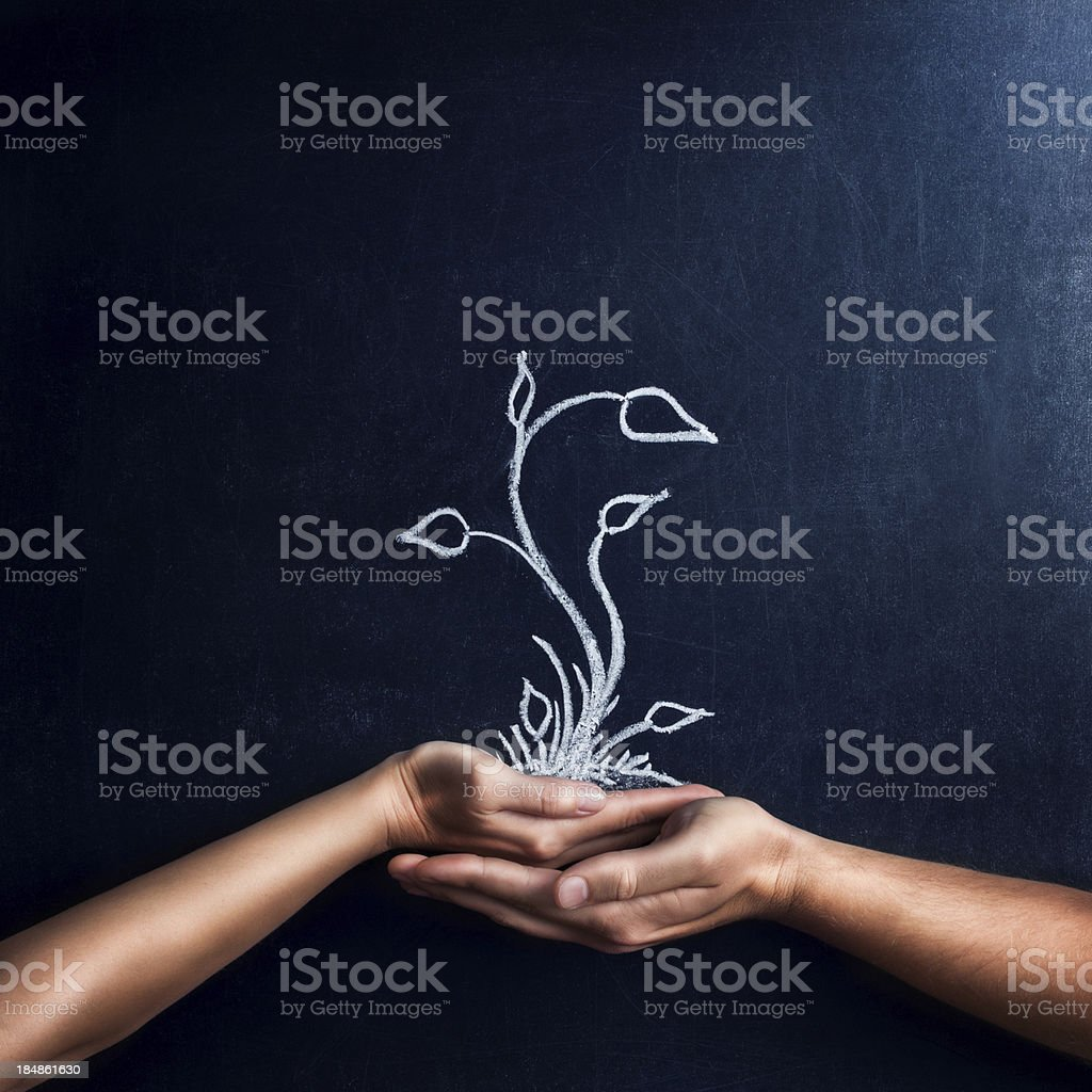 Take care of nature royalty-free stock photo