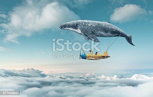 istock Take me to the dream 477445642