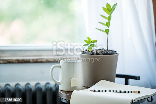 A notepad next to a peaceful window and plant ready to do some writing.