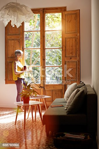 638765726 istock photo Taking a moment to reflect on her day 638765664