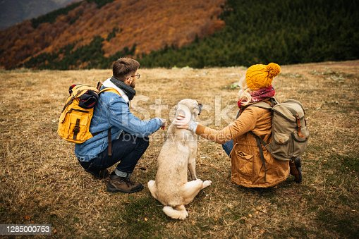 Young couple of hikers sitting on the mountain peak with their shepherd dog, watching the landscape together