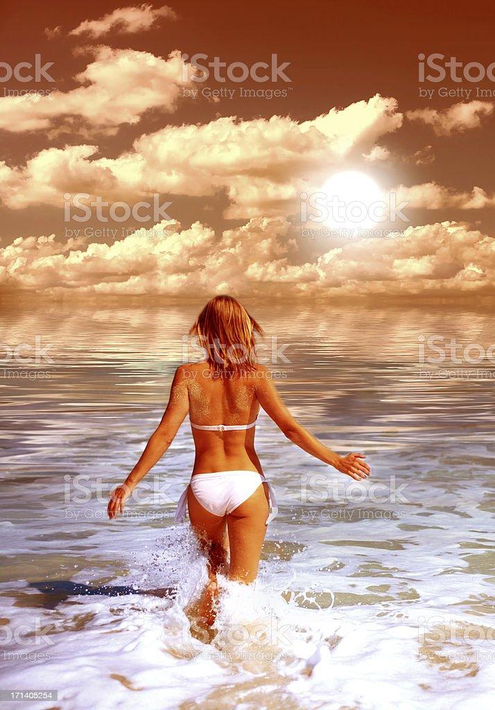 Taking a Swim royalty-free stock photo