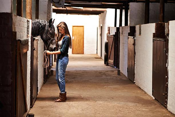 Taking a walk through the stables picture id484227939?b=1&k=6&m=484227939&s=612x612&w=0&h=4 y6ersmfjucugcyq1bam2oeeedfno8xn4y3cw3yzuo=