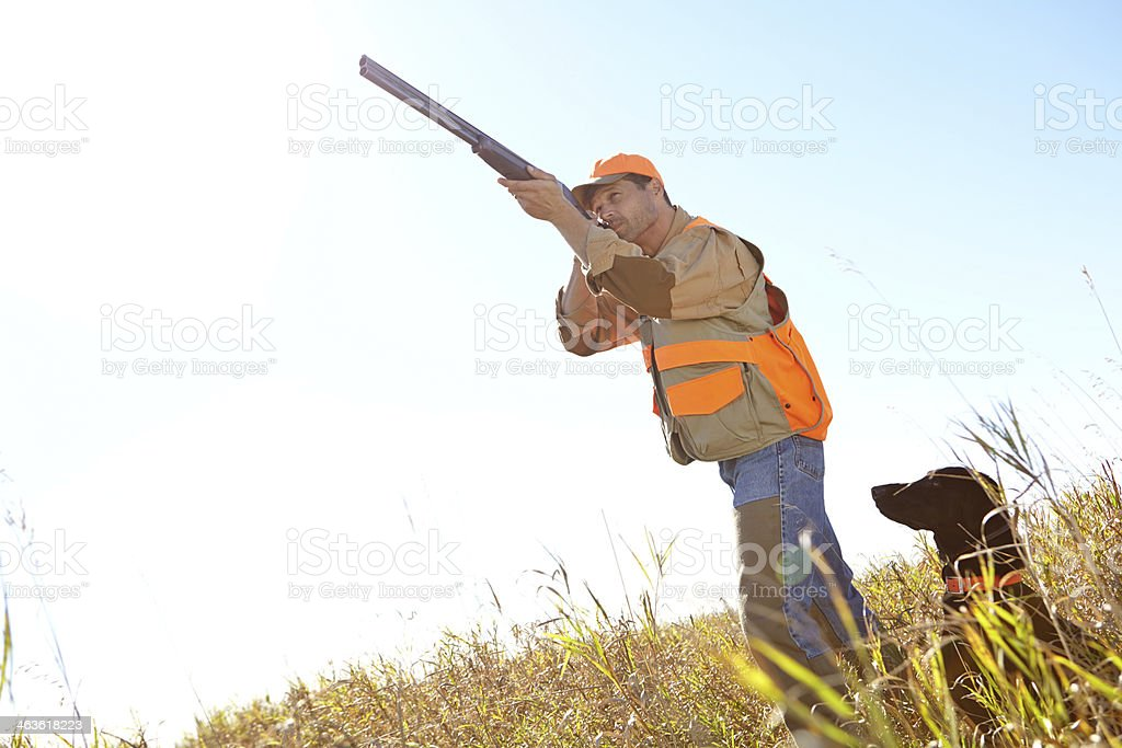 Taking aim and ready to shoot royalty-free stock photo