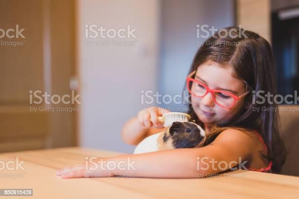 Taking care of guinea pig picture id850915426?b=1&k=6&m=850915426&s=612x612&h=ogpb3d4spyb5uxl9dxmut9ytb4y6u1esxmkz9bdzz1o=