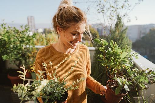 Pflege Meiner Pflanzen Stockfoto und mehr Bilder von Aktiver Lebensstil
