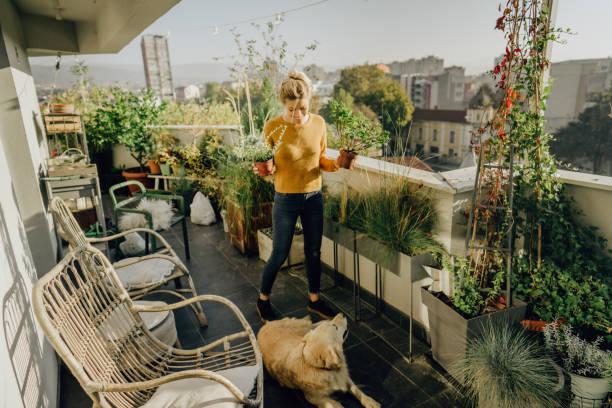 Pflege meiner Pflanzen – Foto