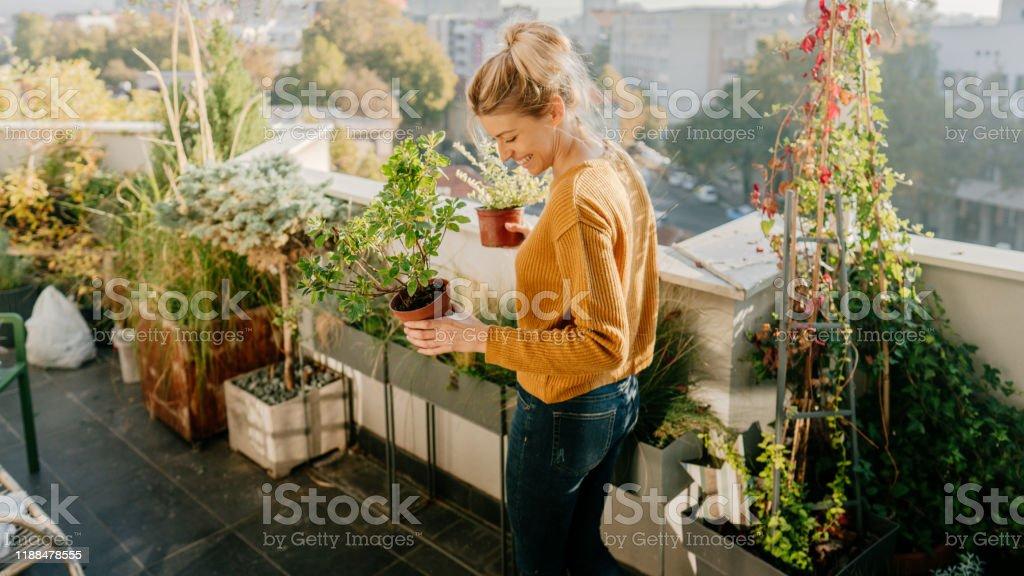 Pflege meiner Pflanzen - Lizenzfrei Aktiver Lebensstil Stock-Foto