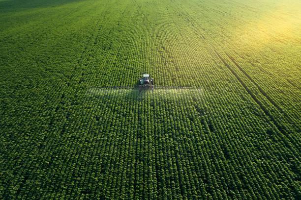 dbanie o uprawy. widok z lotu ptaka ciągnika nawożenia uprawianego pola rolniczego. - zbierać plony zdjęcia i obrazy z banku zdjęć