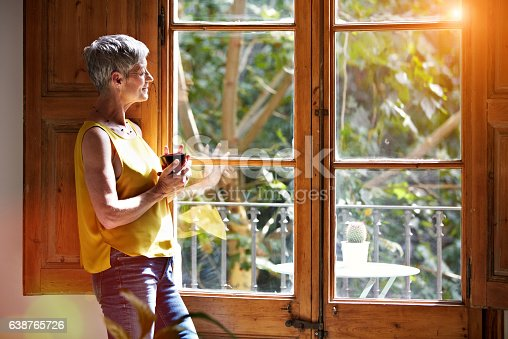 istock Taking in the view from home 638765726