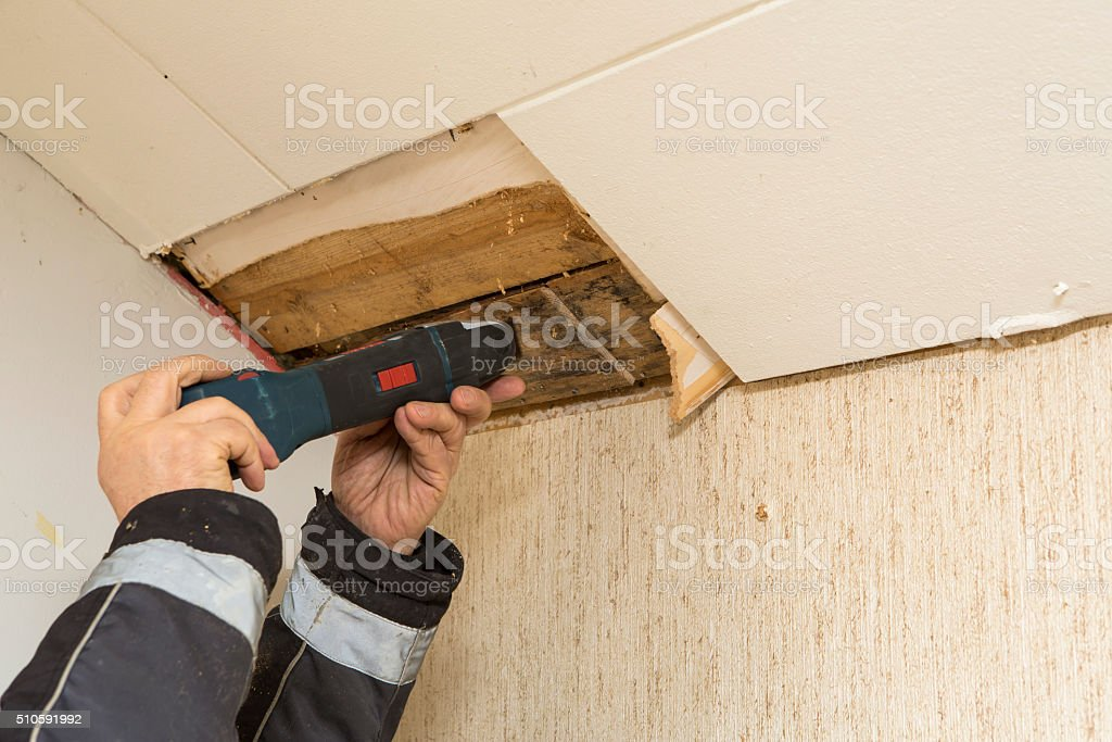taking mold sample stock photo
