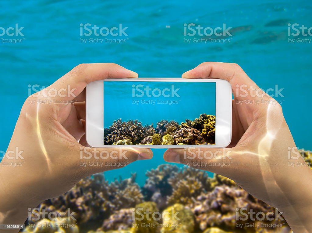 taking photo under red sea stock photo