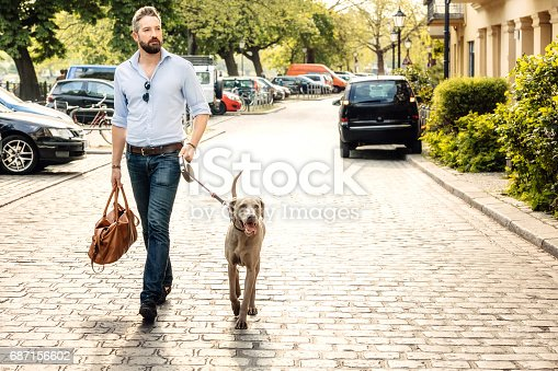 Happy man and his Weimaraner dog