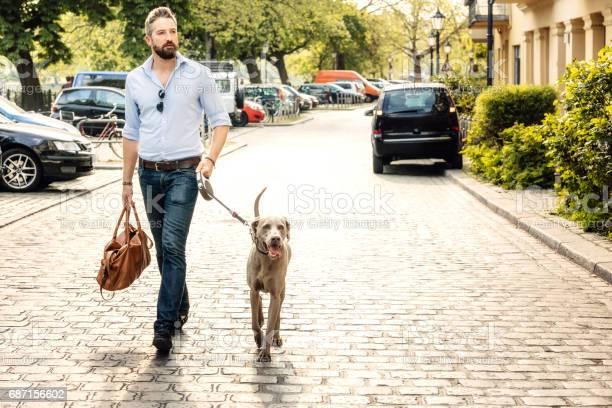 Taking the dog for a walk in the city picture id687156602?b=1&k=6&m=687156602&s=612x612&h=pkex0uw4y5ibarwrjot1jqa3haz3kibdhbeklr8dqqo=