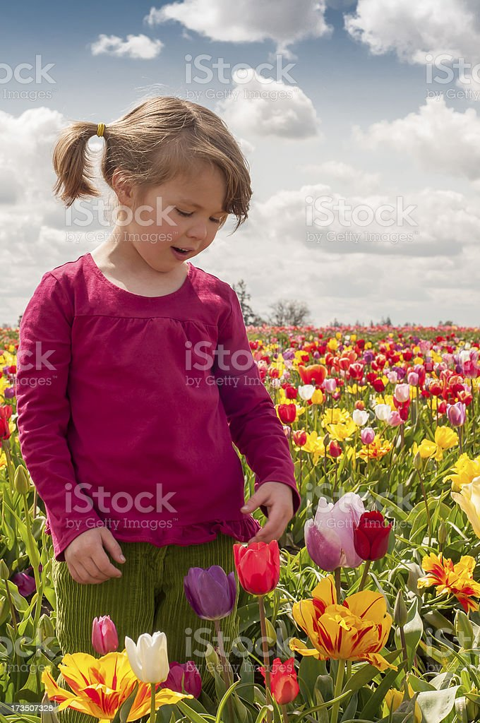 Taking Time to Smell the Flowers royalty-free stock photo