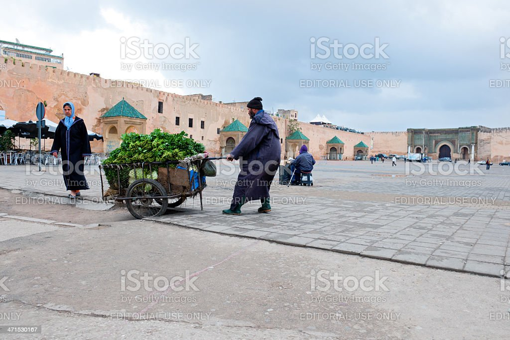Taking Vegetable to Market in Meknes Morocco royalty-free stock photo