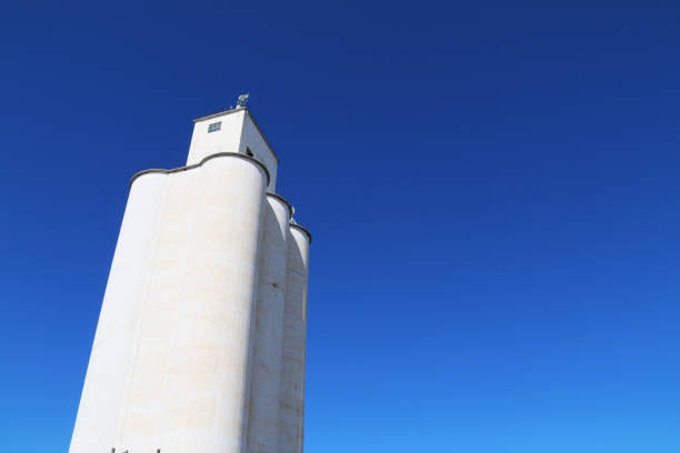 tall community co-op cooperative agricultural farm feed grain and corn silo building in a small town in rural heartland america perfect for farming and agriculture stock imagery stock photo