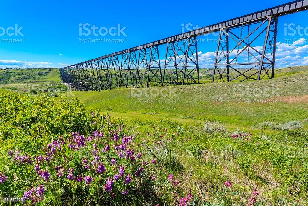 Tall Train Bridge stock photo