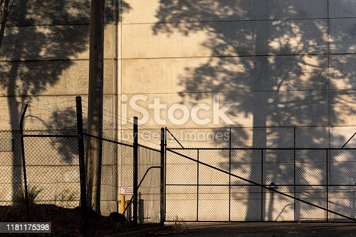 istock Tall Tree Casting Shadow On Brutalist Factory Warehouse Wall During Afternoon Light 1181175398