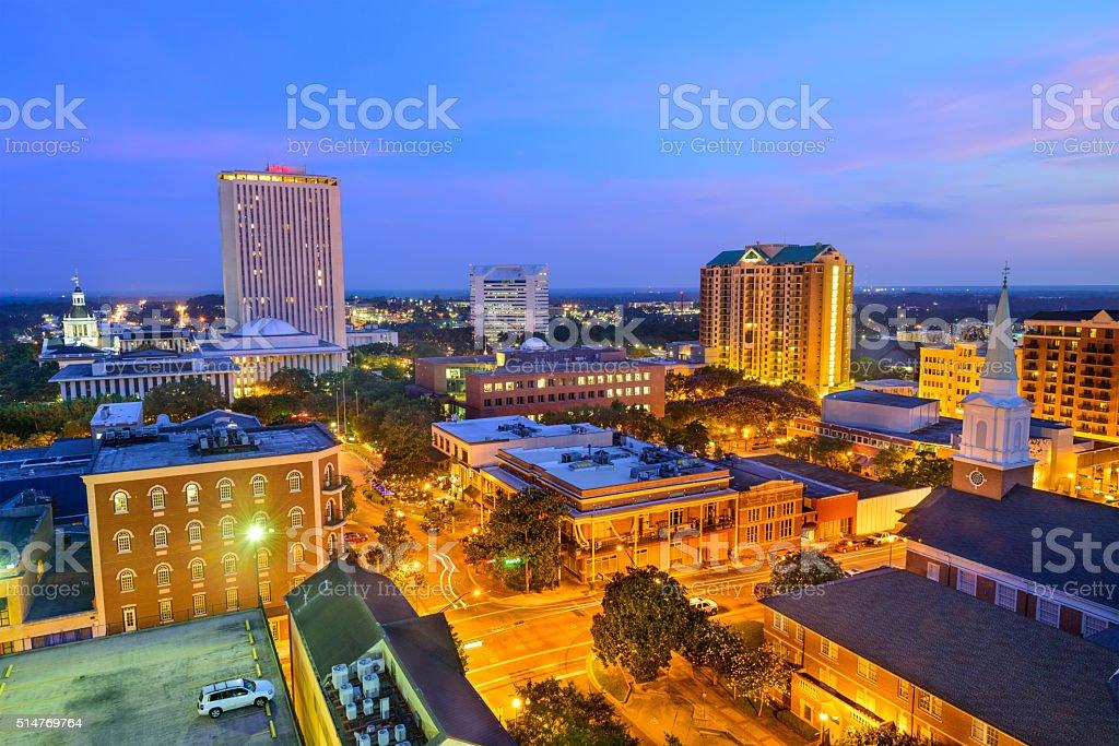 Tallahassee Florida Skyline stock photo