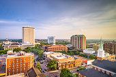 istock Tallahassee, Florida, USA Skyline 932798916