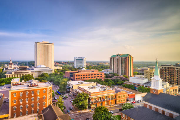 tallahassee, florida, usa skyline - town stock pictures, royalty-free photos & images