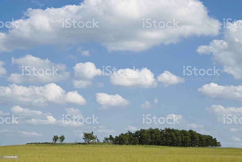 Tallgrass Prairie royalty-free stock photo