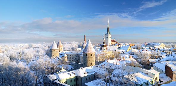 Tallinn City Estonia Snow On Trees In Winter Stock Photo - Download Image Now