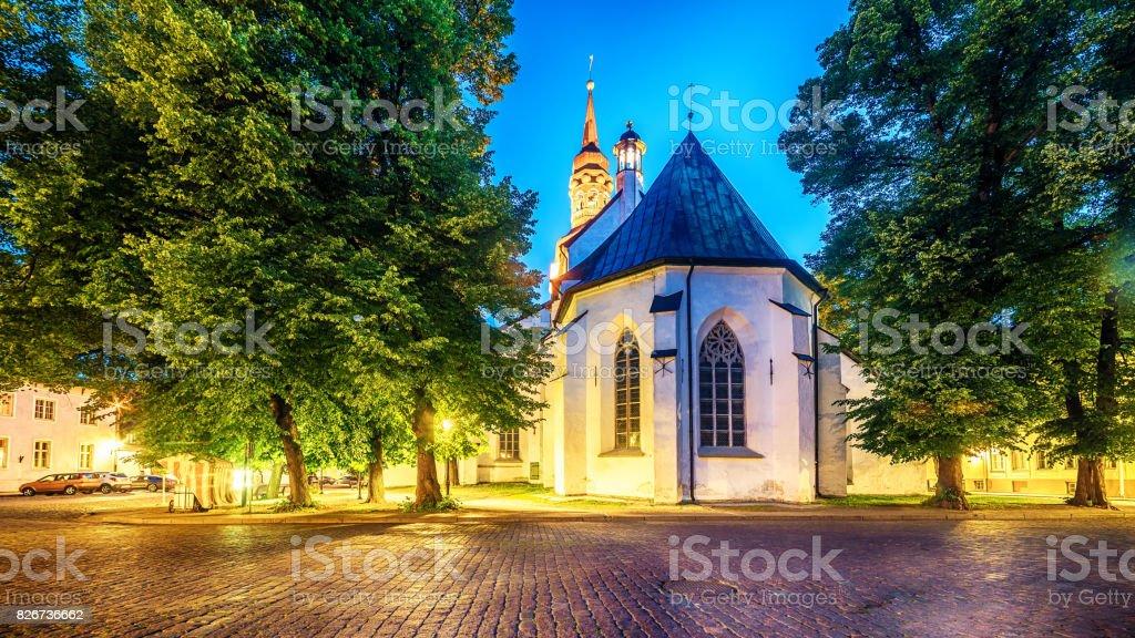 Tallinn, Estonia: St Mary's Cathedral stock photo