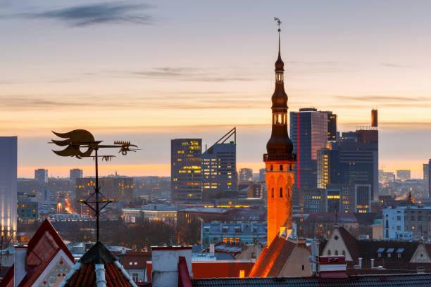 tallinn. eski şehir şafakta. - estonya stok fotoğraflar ve resimler