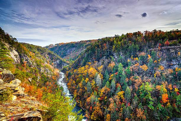 Tallulah Gorge in Georgia Tallulah Gorge in Georgia, USA. ravine stock pictures, royalty-free photos & images