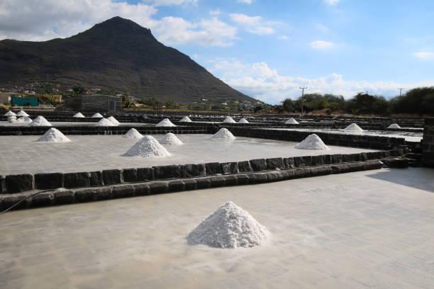 tamarin salt pans, mauritius, indian ocean, africa - tamarin photos et images de collection