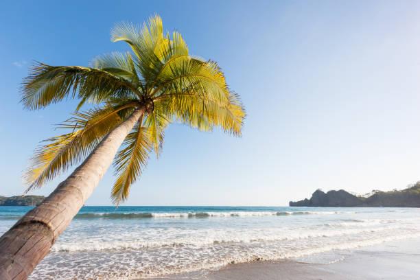 Tamarindo Beach Costa Rica – Foto