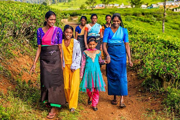 Tamil women walking with their children, Nuwara Eliya, Ceylon stock photo