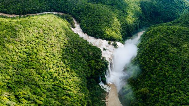 Tamul Waterfall in San Luis Potosí, Mexico Aerial view of Tamul Waterfall in San Luis Potosí, Mexico. san luis potosi stock pictures, royalty-free photos & images