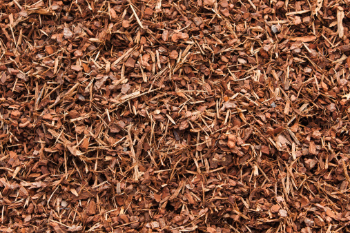 Tan Bark Garden Mulch Stock Photo Download Image Now Istock