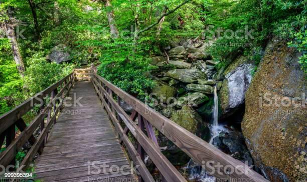 Photo of Tanawha Hiking Trail along the Blue Ridge Parkway on Grandfather Mountain