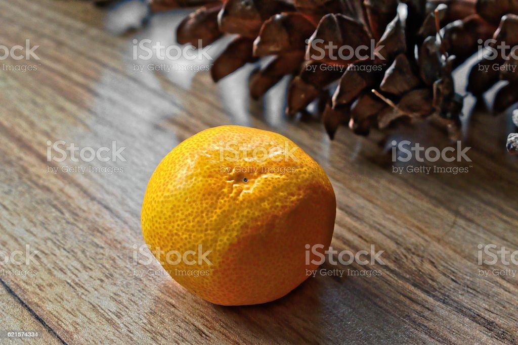 Tangerine and Pine Cones photo libre de droits