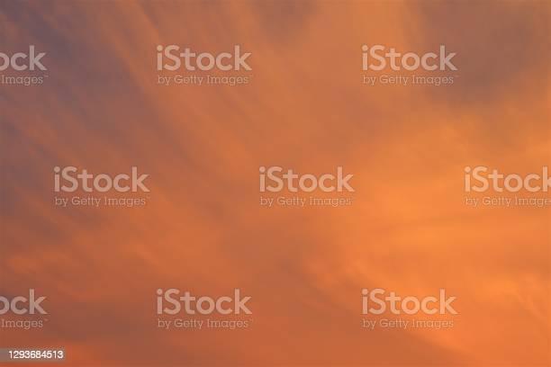 Photo of Tangerine Fluff Background