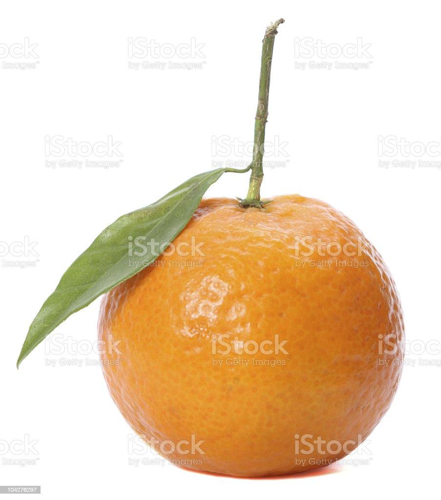 Tangerine isolated on white background stock photo