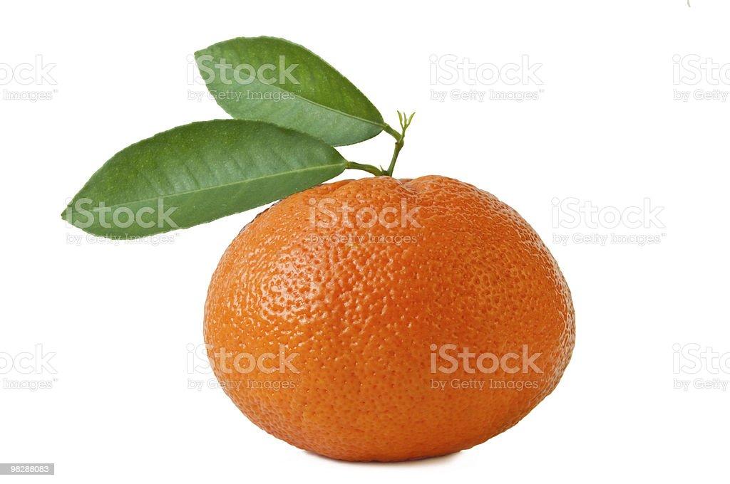 Tangerine on white royalty-free stock photo