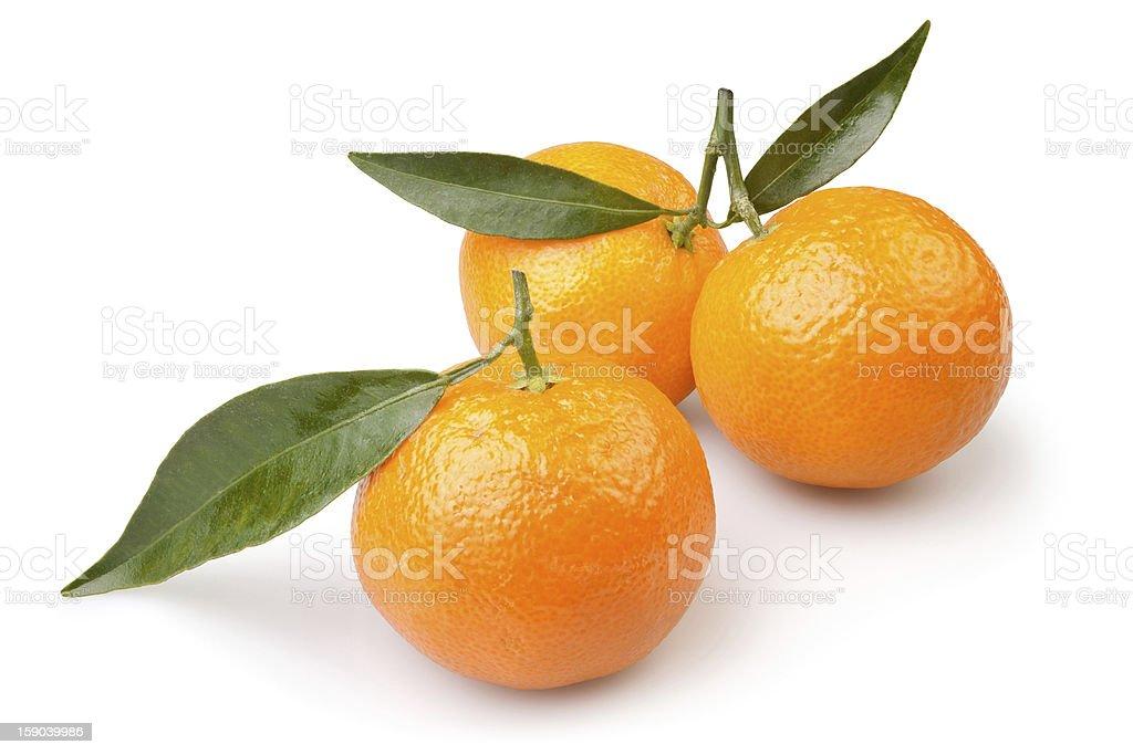 tangerine three royalty-free stock photo