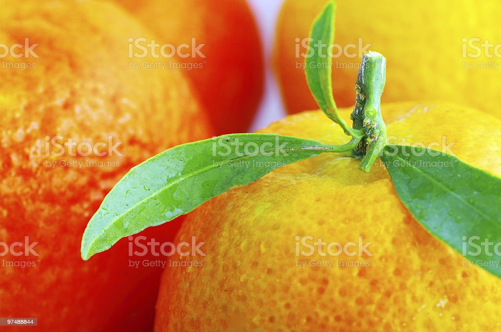 Tangerine with leaves royalty-free stock photo