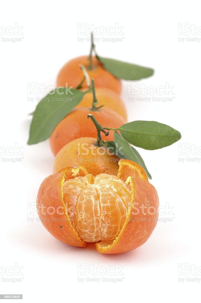 Tangerines en rollo foto de stock libre de derechos